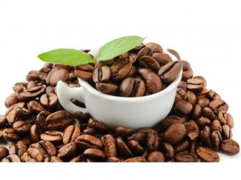 ** Organic Coffee, Organic Food ** – All Offers Will Be Considered – Ref: 2499