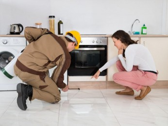 Dynamic Pest Control, 6 Territories for Sale Brisbane and Gold Coast #5184SR