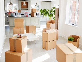 Online Removals Business For Sale #5227TR