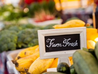 Highway Fruit and Vegetable Business for Sale # 2995